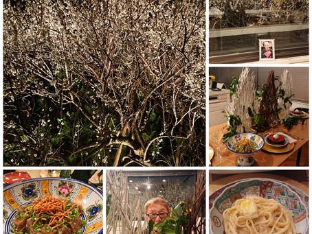 梅を見に行きました。