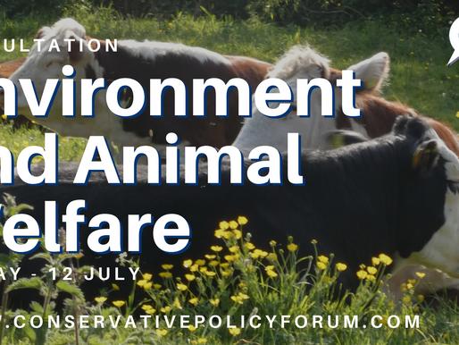 Summary of CPF consultation on the Environment & Animal Welfare