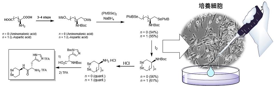 図2.1.png