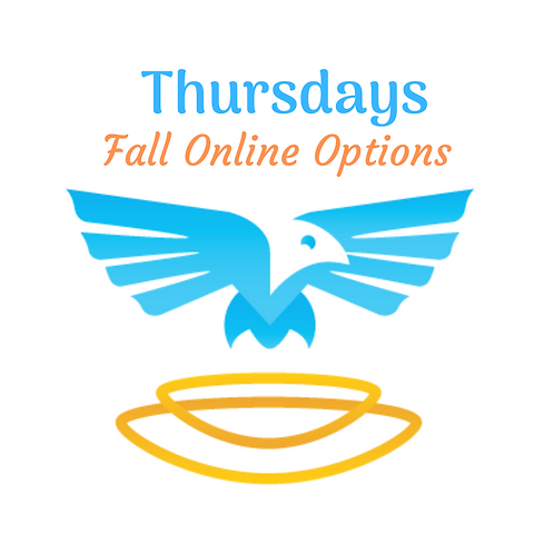 Thursday - Virtual Options