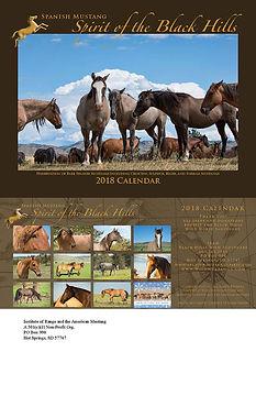About The Spanish Mustang Spirit Program