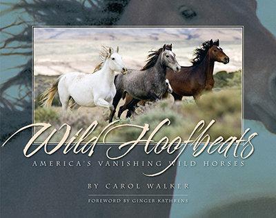 Wild Hoofbeats by Carol Walker