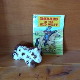 Horses of the Old West Gift Package