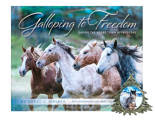 Galloping to Freedom Book and Bronze Warrior Ornament