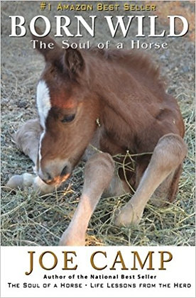 Born Wild: The Soul of a Horse