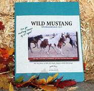 Wild Mustang Sponsor