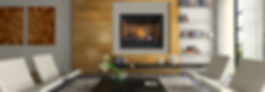 Napoleon High Definition Gas Fireplace