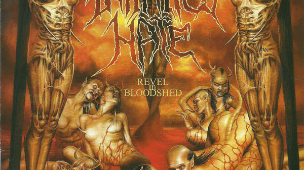 Infinited Hate - Revel and bloodshed
