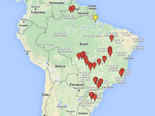 Você conhece o histórico da Helicoverpa armigera no Brasil?