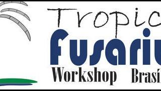 """Brasília-DF sedia a oitava edição do """"Tropical Fusarium Workshop"""""""