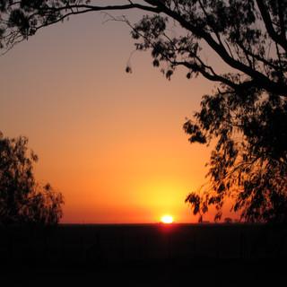 Puesta de sol en el campo.jpg