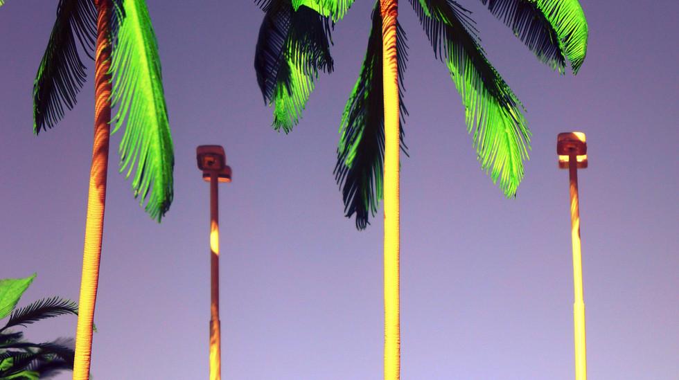 海辺のパーキング20266.JPG