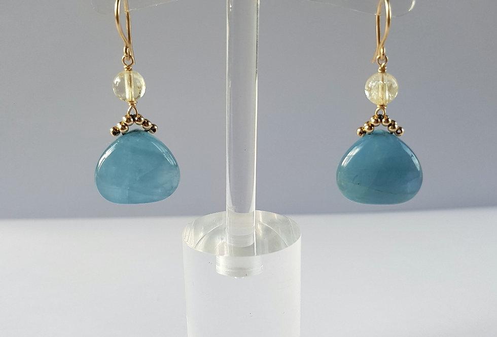 Aqualemon Earrings