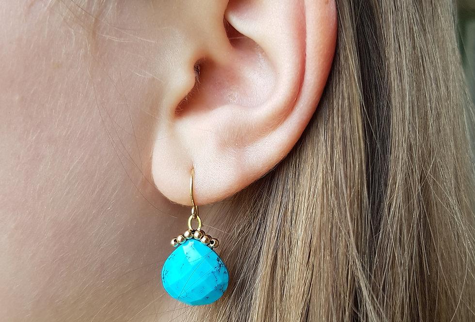 Turquoise Briolette Earrings