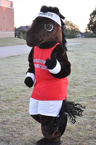 bridlewood bronco mascot.jpg