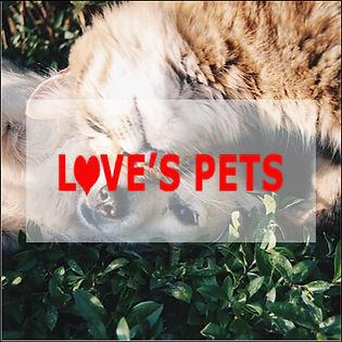 pets.002.jpeg