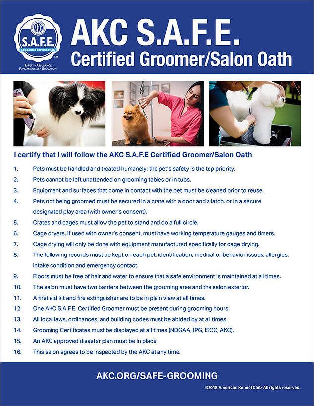 salon-oath (1).jpg
