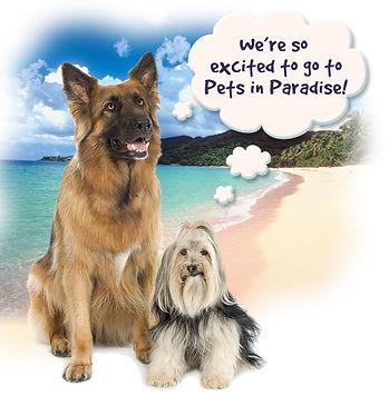 dog-thinker-appointment.jpg