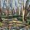 Thumbnail: Indian Mound Trails (Original)