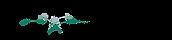 Undergraduate Awards Logo.png
