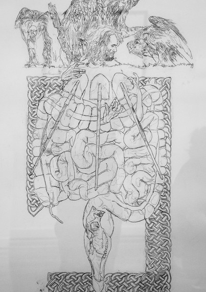 intestines6.jpg