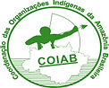 Logo_COIAB.png