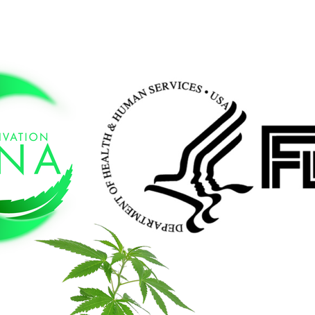 FDA Drafts New Guidance Surrounding CBD Medications