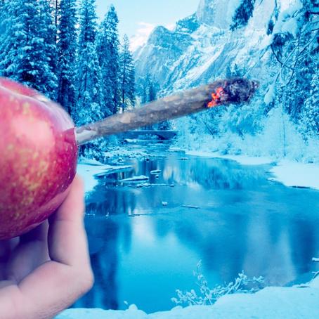 Tackling Holiday Stress with Cannabis