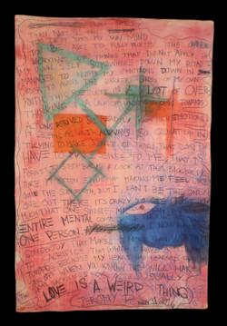 Canvas Diaries