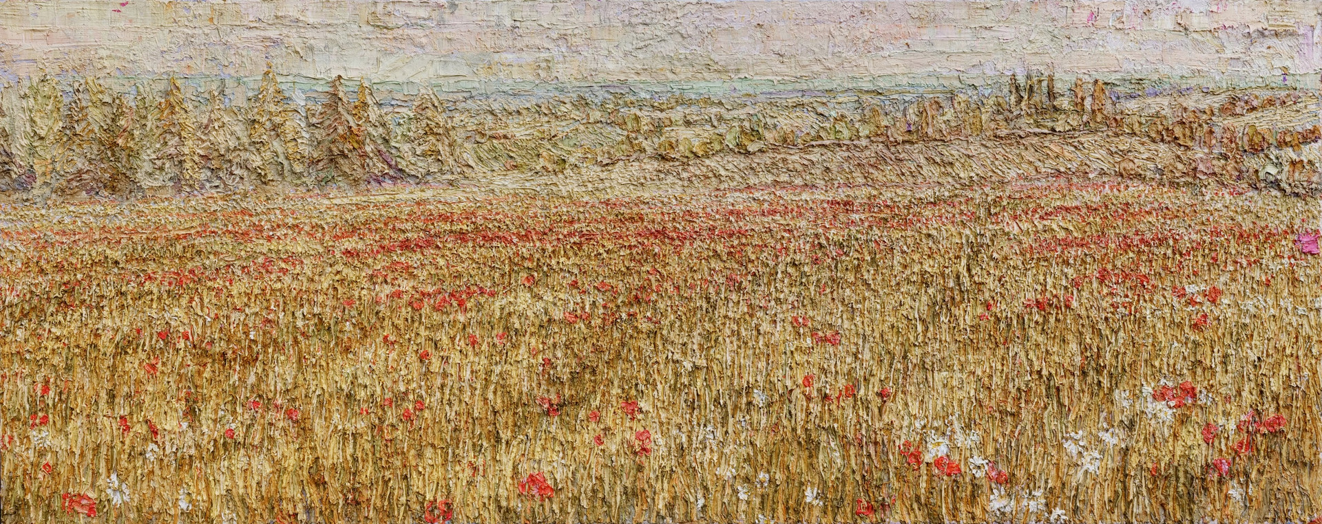 'Poppies, Stearsby, North Yorkshire, 202