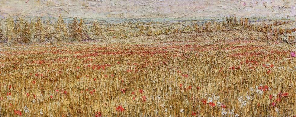 'Poppy Field, North Yorkshire, 202