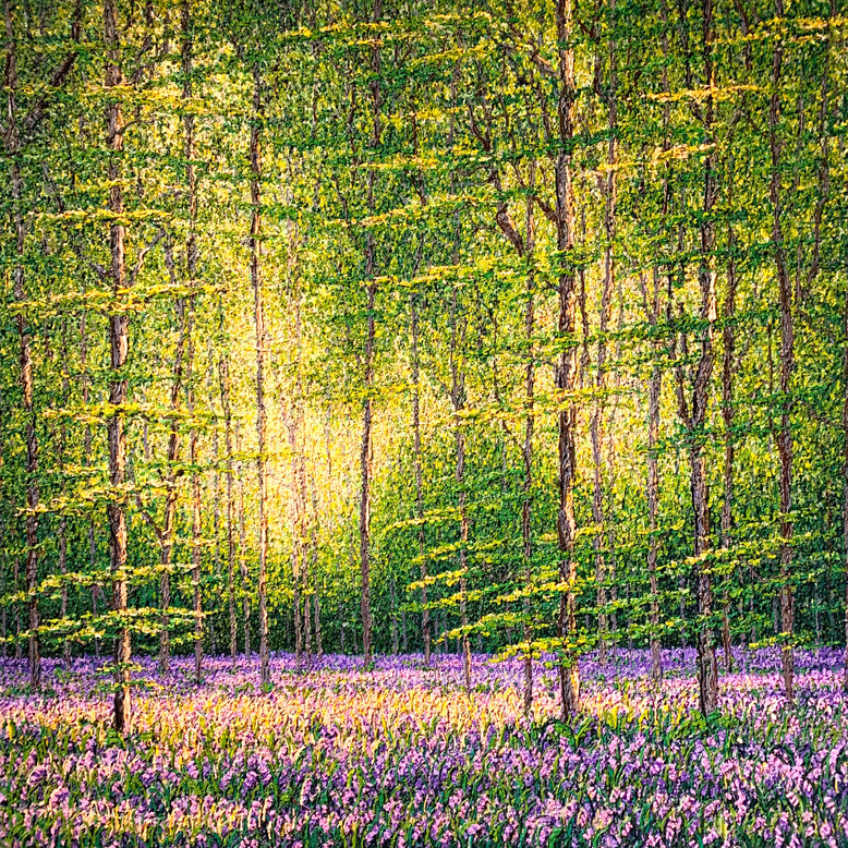 'Hazelwood, Spring'