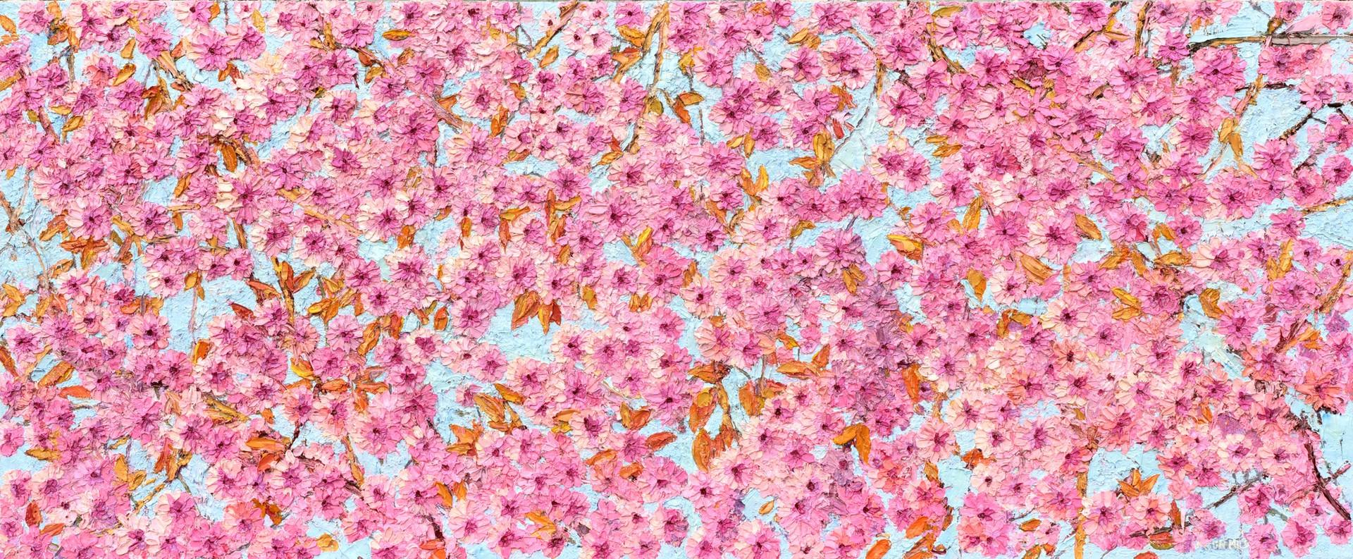 'Cherry Blossom. 2020