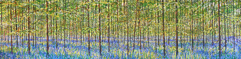 Bluebell Wood, North Yorkshire,