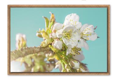 Screenshot 2020-04-06 18.50.12.png