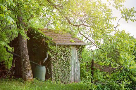 Holzhütte_Fotograf.jpg