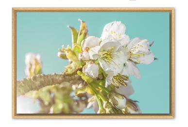 Screenshot 2020-04-06 18.49.57.png