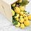 Thumbnail: Citrons de Menton frais BIO - 4,5kg