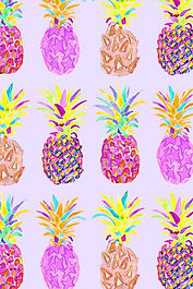 pineapple illustration 3.jpg