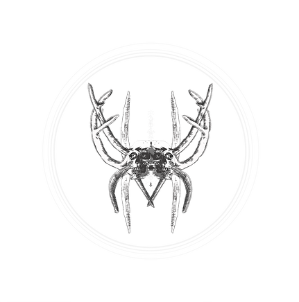 BW HORNS 2.png