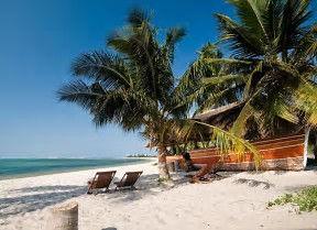 Mozambique News & Events   African Dreams Photo Safaris6