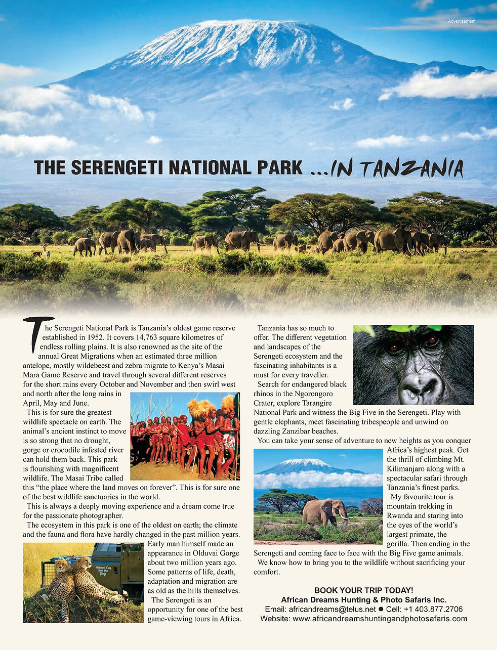 The Serengeti National Park In Tanzania