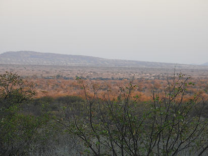 Hunt to Preserve Africa - Elaine Ness- Hunting Terrain