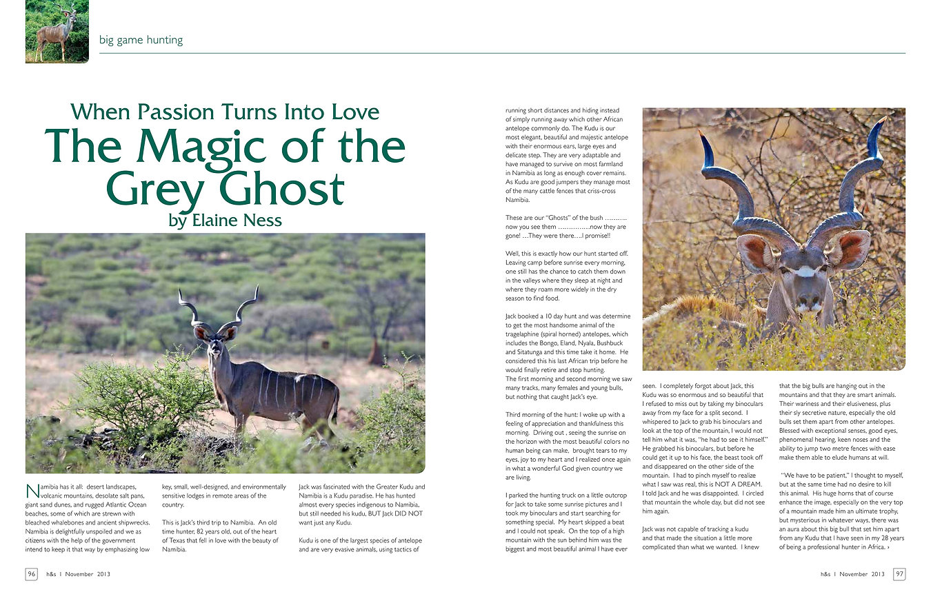 The Magic of the Grey Ghost by Elaine Ness