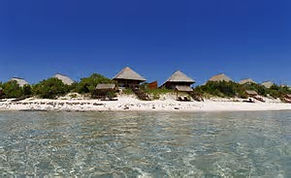 Mozambique News & Events   African Dreams Photo Safaris7