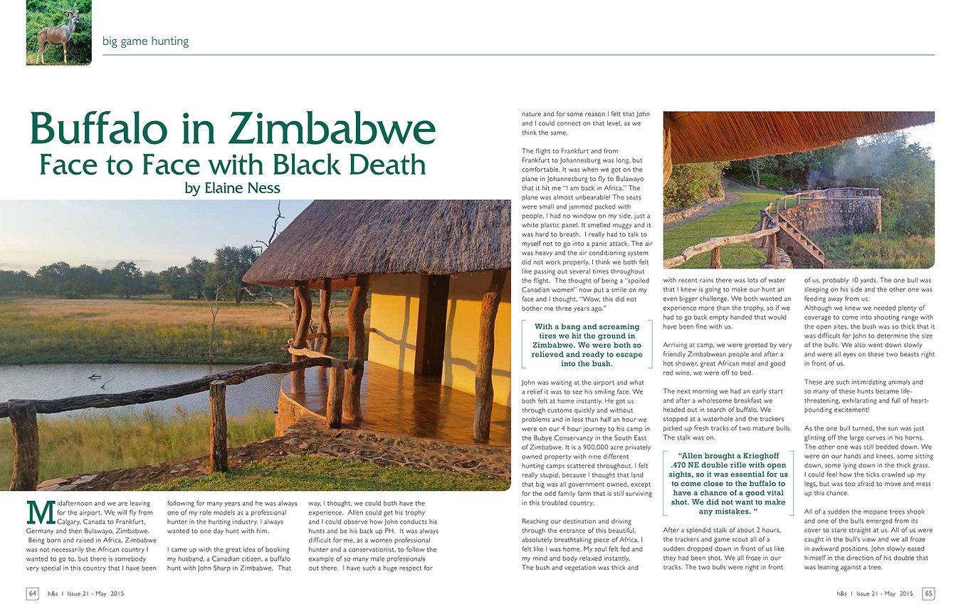 Buffalo in Zimbabwe by Elaine Ness