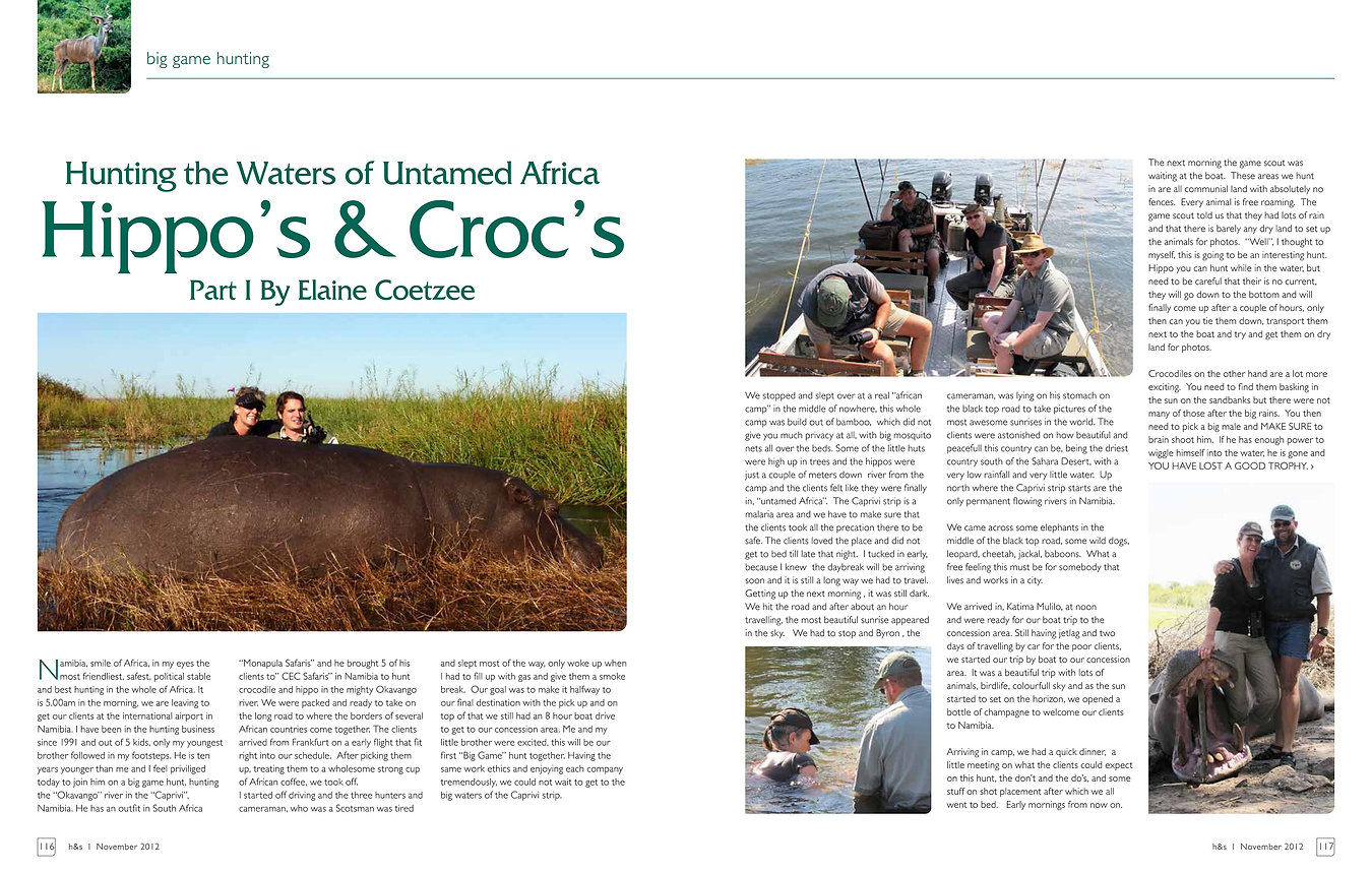 Hippo's and Croc's by Elaine Ness
