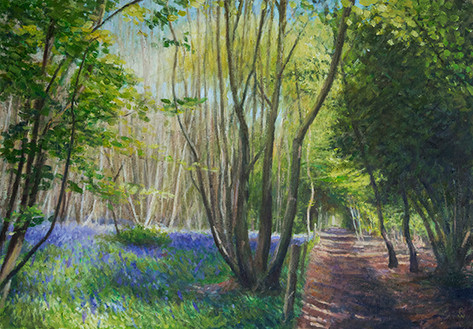 Bluebells, West Stoke Path