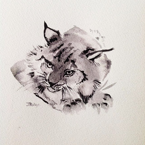 JAR 015 Lion Cub by Jackie Ridge