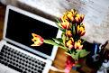 Ordinateur portable et fleurs